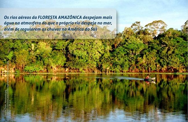 Foto de uma parte da floresta amazônica com um rio e muitas árvores ao fundo. No rio, há um homem dentro de uma pequena canoa. Sobre a foto, na parte superior direita, há uma tarja transparente com a seguinte mensagem: Os rios aéreos da FLORESTA AMAZÔNICA despejam mais água na atmosfera do que o próprio rio despeja no mar, além de regularem as chuvas na América do Sul.